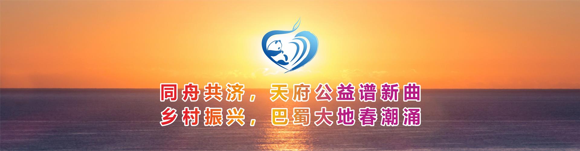 同舟共济,续写公益新华章